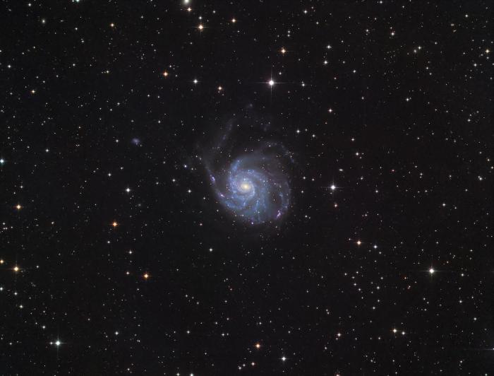 M101_d